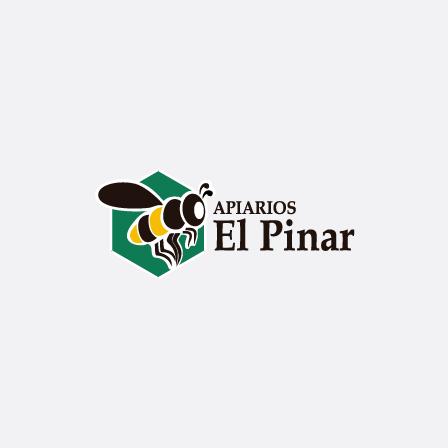 19102016_apiarios_logo_para_web_v01_dg